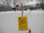 Requiem auf einen ungepflanzten Baum